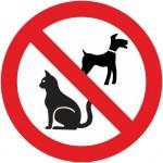 Animaux interdits V2