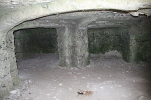Les Andelys-Château Gaillard-09